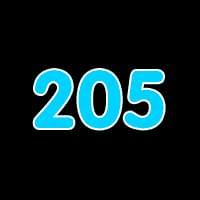 第205关