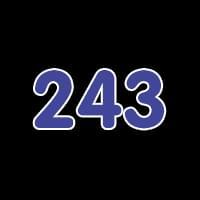 第243关