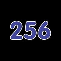 第256关