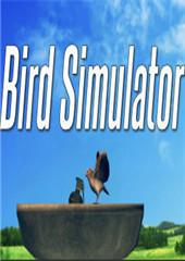 鸟类模拟器