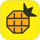 网易菠萝视频iPad版