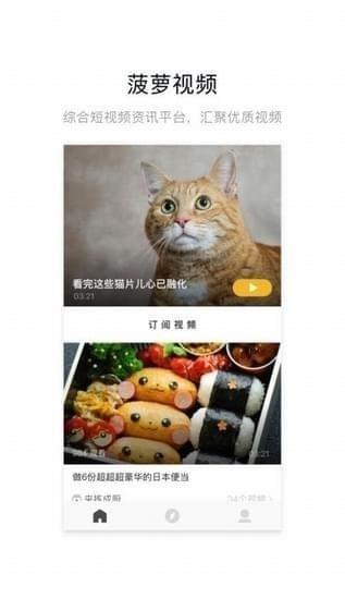 网易菠萝视频iPad下载