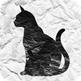 迷猫寻找母亲的旅程-v1.0