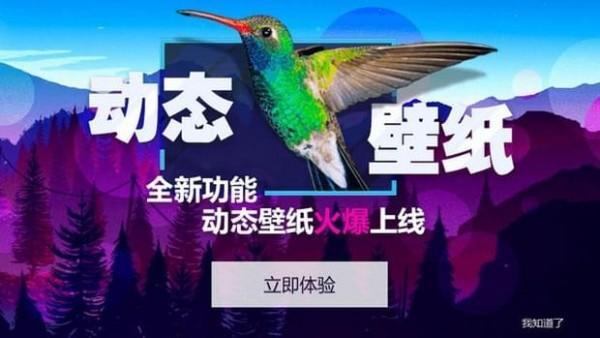 360小鸟壁纸app