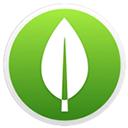 MongoDB Mac版