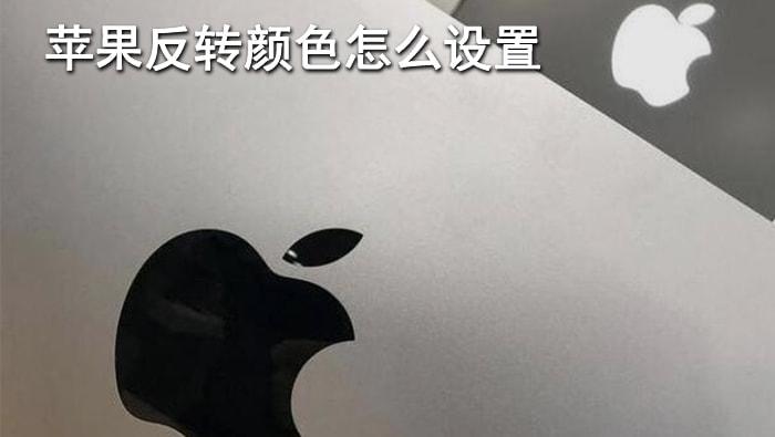 苹果反转颜色怎么设置